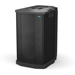 Bose F1 Subwoofer (powered)