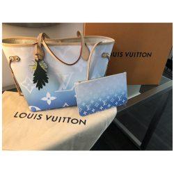 Louis Vuitton Bag b